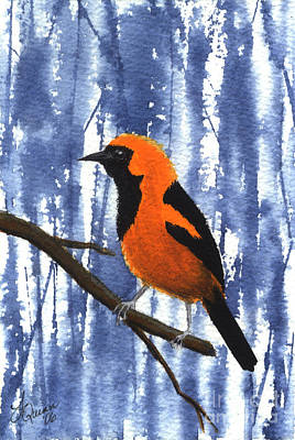 Orange-headed Oriole Poster