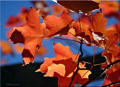 Orange Leaves Poster