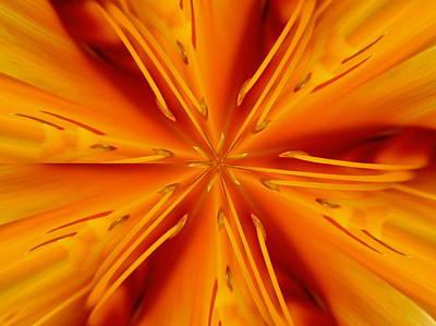 Orange Marmalade Poster by David Dunham