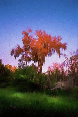 Orange Oak Poster