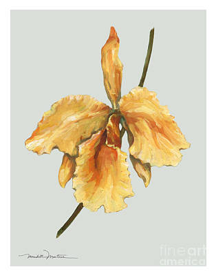 Orange Orchid Poster by Meridith Martens