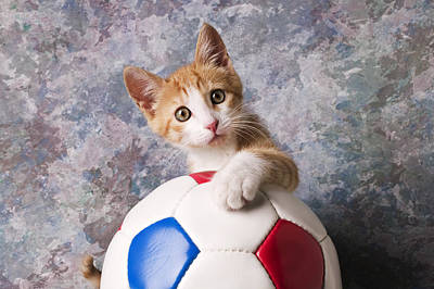 Orange Tabby Kitten With Soccer Ball Poster by Garry Gay