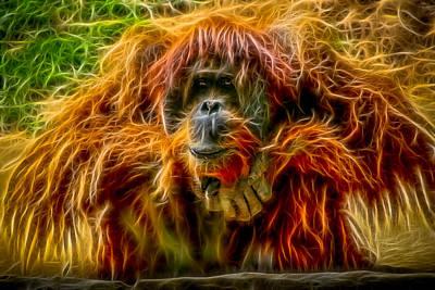 Orangutan Inspiration Poster