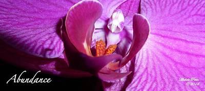 Orchid Abundance Poster