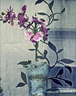 Orchid In The Window Poster