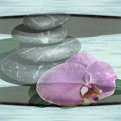 Orchid Tranquility Poster