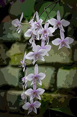 Orchid Waterfall Poster