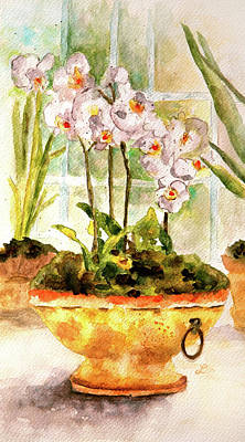 Orchids By The Window Poster