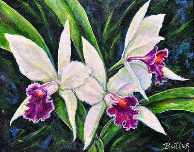 Orchids Poster by Gail Butler