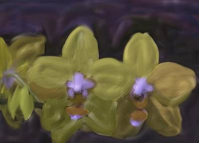 Poster featuring the digital art Orchids Golden by The Art of Alice Terrill