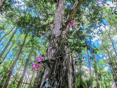 Orchids In A Tree Poster