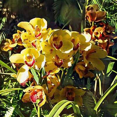 Orchids In Texture Poster