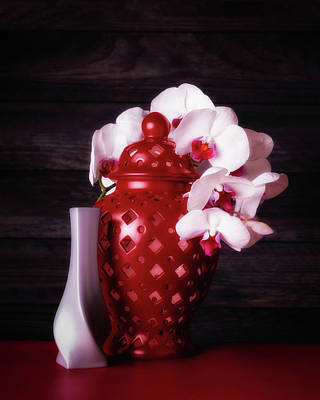 Orchids With Red And Gray Poster
