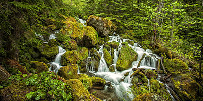 Oregon Cascades Poster
