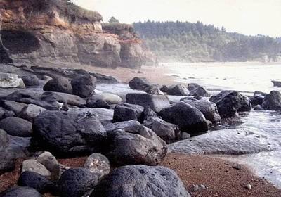 Oregon Coast Rocks Poster by Molly Williams