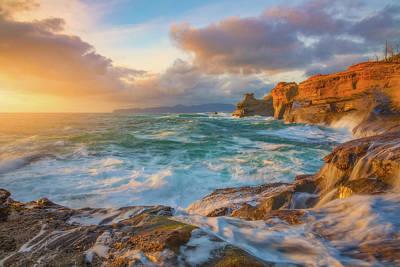 Oregon Coast Wonder Poster by Darren White