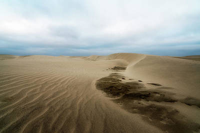 Poster featuring the photograph Oregon Dune Wasteland 1 by Ryan Manuel