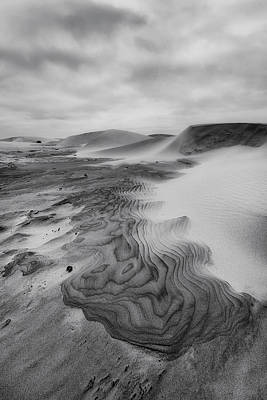 Poster featuring the photograph Oregon Dune Wasteland 2 by Ryan Manuel