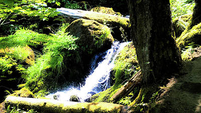 Poster featuring the photograph Oregon Spring by Pacific Northwest Imagery