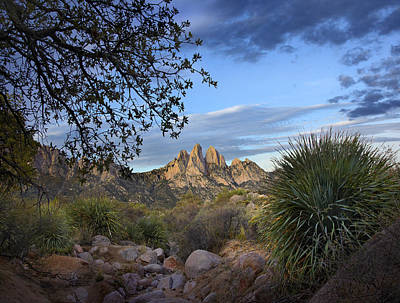Organ Mountains Near Las Cruces New Poster