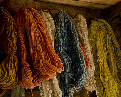 Organic Yarn And Natural Dyes Poster by Wilma  Birdwell