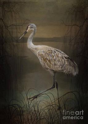 Oriental Sandhill Crane Poster