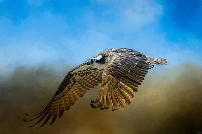 Osprey Over Pickwick Poster
