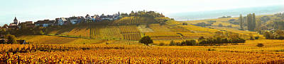 Ostheim Village And Vineyards Poster by Panoramic Images