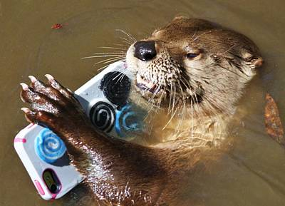 Otter Making A Call Poster by Paulette Thomas