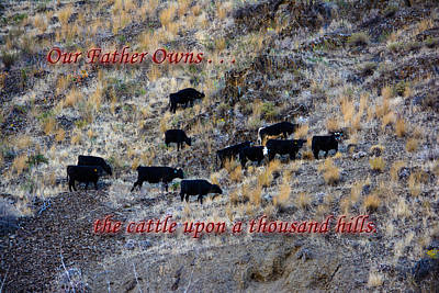 Our Father Owns Poster by Tikvah's Hope