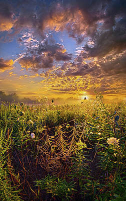 Out And About Poster by Phil Koch