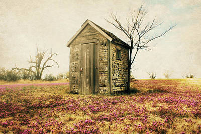 Outhouse Poster by Julie Hamilton