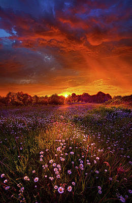 Out On The Edge Of Day Poster by Phil Koch
