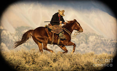 Outlaw Kelly Western Art By Kaylyn Franks Poster