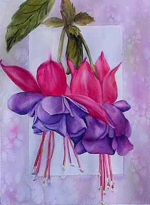 Outstanding Fuschias Poster by Sue Chorney