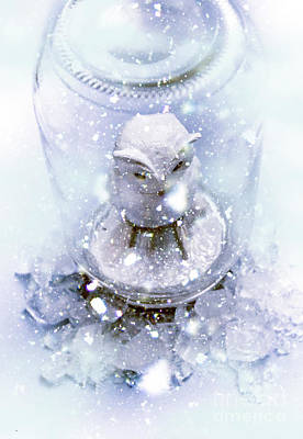 Owl Captive In Winters Frost Poster by Jorgo Photography - Wall Art Gallery