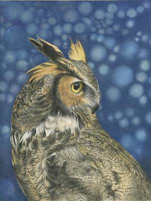 OWL Poster by Penny Cash