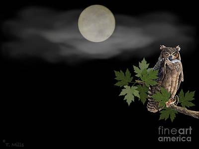 Owl Poster by Terri Mills