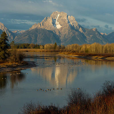 Oxbow Bend Poster by Brian Governale
