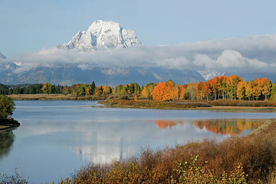 Poster featuring the photograph Oxbow Bend  by Wesley Aston