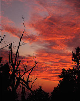 Poster featuring the photograph Ozark Dawn by Michael Dougherty