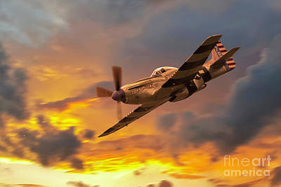 P-51 Fragile But Agile Poster