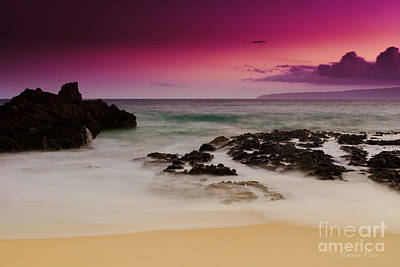 Paako Beach Tropical Dreams Poster by Sharon Mau