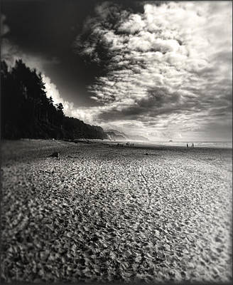 Poster featuring the photograph Pacific Coast Highway Oregon by Douglas MooreZart