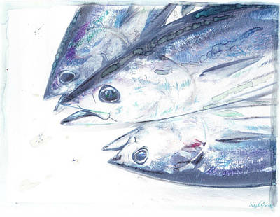 Pacific Skipjack Poster