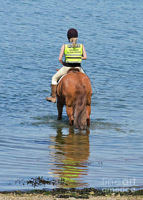 Paddling Horse Poster by Terri Waters