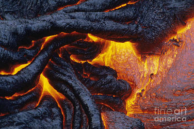 Pahoehoe Lava Texture Poster by Ron Dahlquist - Printscapes