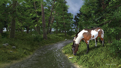 Paint Horse By The Forest Stream Poster