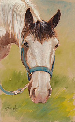 Paint Horse Pause Poster by Tracie Thompson