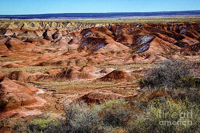 Painted Desert In Winter Poster